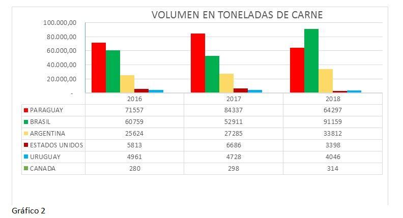 Gráfico 2: volumen en toneladas de carne.