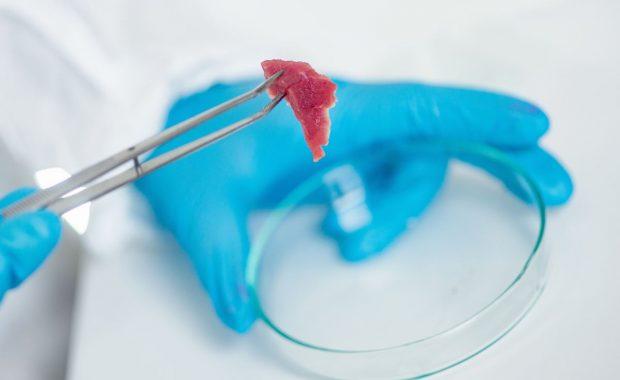 Utilización de los análisis microbiológicos para programas de limpieza y desinfección