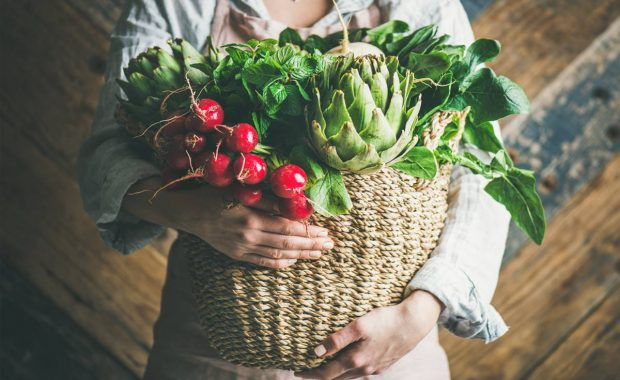 """Safer Food, Better Business"": comidas más seguras, mejores negocios"