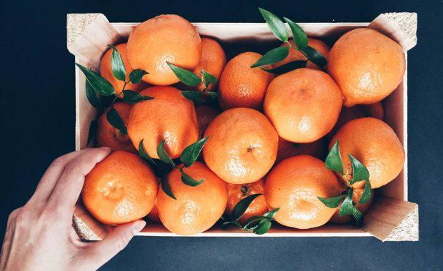 Tips sobre inocuidad alimentaria [enero 2020]