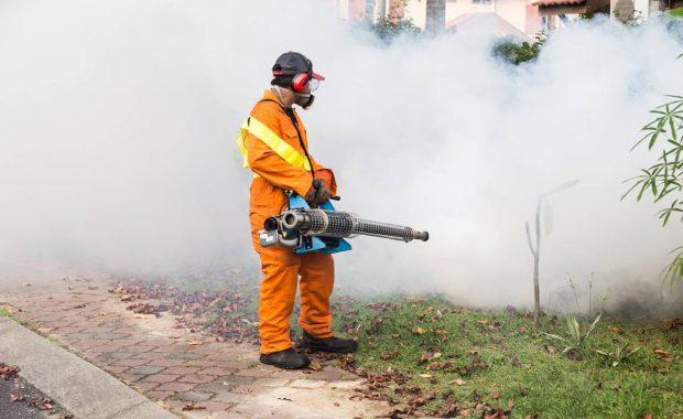 Dengue: trabajar en la prevención