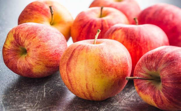Tips sobre inocuidad alimentaria [febrero 2020]
