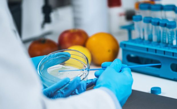 Gestión Alimentaria: capacitación a distancia In Company