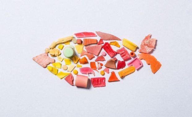 Alimentos: microplásticos en el mar