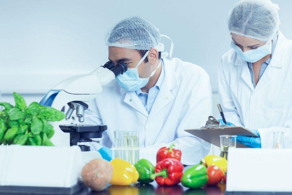 ¡Nuevo! Curso Microbiología en Alimentos