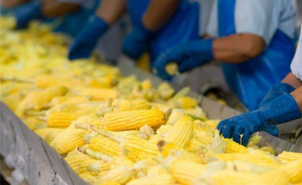 Cartelería PI: Vestimenta en industria de alimentos (calzado, barbijo, guantes y armarios)