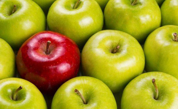 Día Mundial de la Inocuidad de los Alimentos