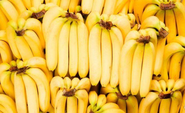 Tips sobre inocuidad alimentaria [mayo 2021]