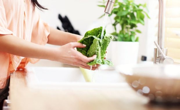 Lavado y limpieza de vegetales